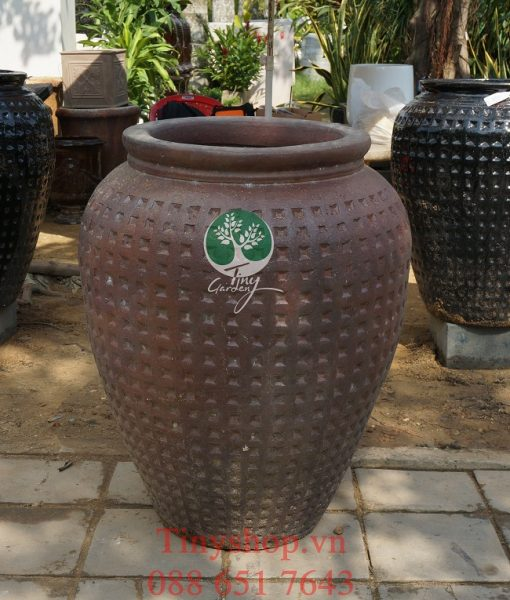 Chau-dat-nung-tron-TNDNT005