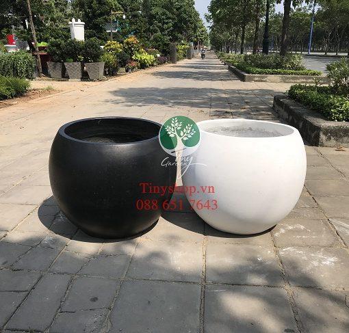 chau-xi-mang-XMTNT003