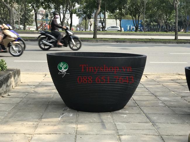 chau-xi-mang-XMTNT004-1