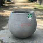 chau-xi-mang-XMTNT005-5